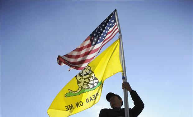 A Tea Party supporter flies his flags during the third and final day of legal arguments over the Patient Protection and Affordable Care Act in Washington